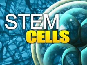 Stem Cell Therapy Chicago